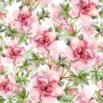 Wallpaper Murah Motif Floral AL-D-003