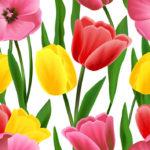 Wallpaper Murah Motif Floral AL-D-037