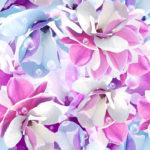 Wallpaper Murah Motif Floral AL-D-042