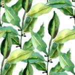 Wallpaper Murah Motif Floral AL-D-047