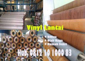 Vinyl-Rumah-Sakit